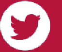 Twitter Icon Red